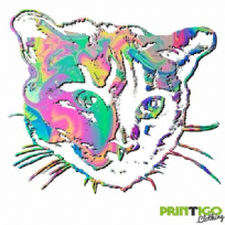 Psychedelic Cat Head